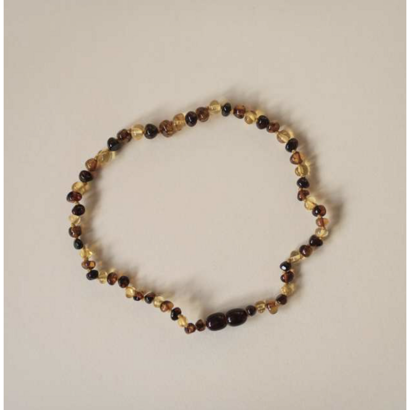 Lille Multicoloured Polished Amber Necklace