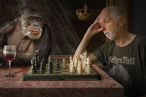 monkey and old man playing chess