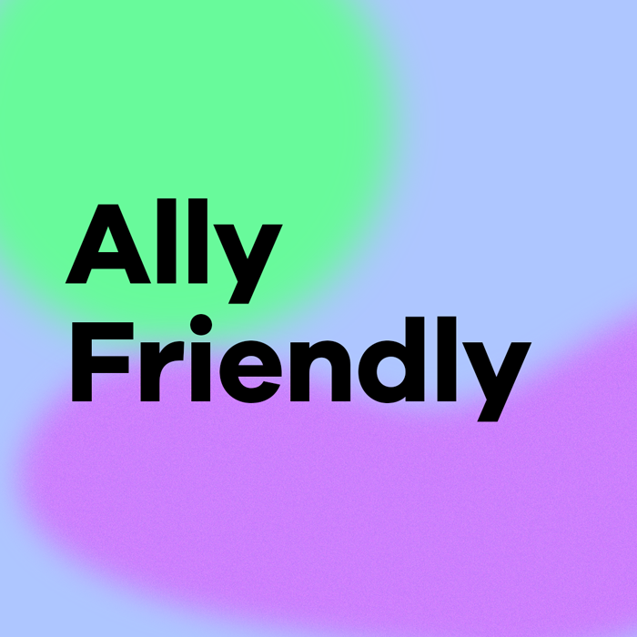 ally friendly key chain