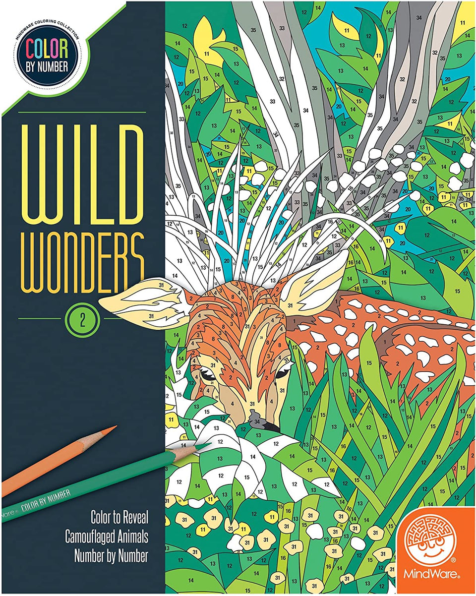Wild Wonders Color by Number Book 2