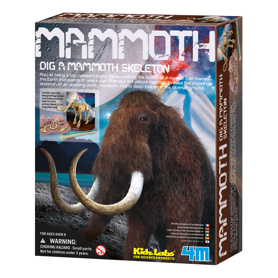 Dig a Mammoth Skeleton