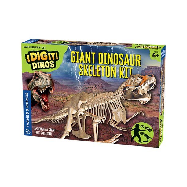 Giant T Rex Dinosaur Skeleton Kit