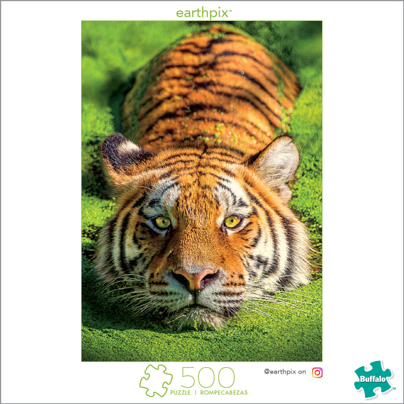 Earth Pix Tiger Eyes 500 Piece Puzzle