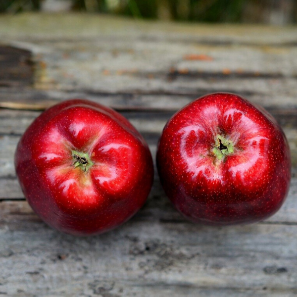apples_for_root_chakra_balancing