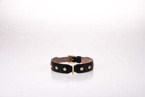 Dog Stud Screw Collar in Soft Leather Grande - Black / 40 - Black / 45 - Black / 50