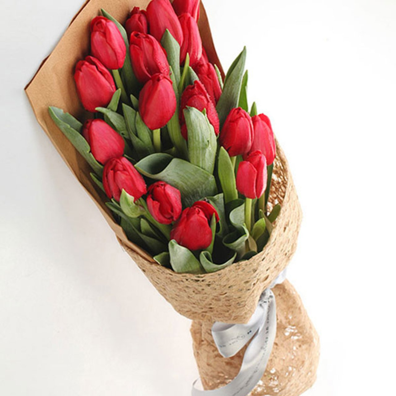 Love by my side( A selection of 19 superb red tulips. (Tulips are seasonal flowers-