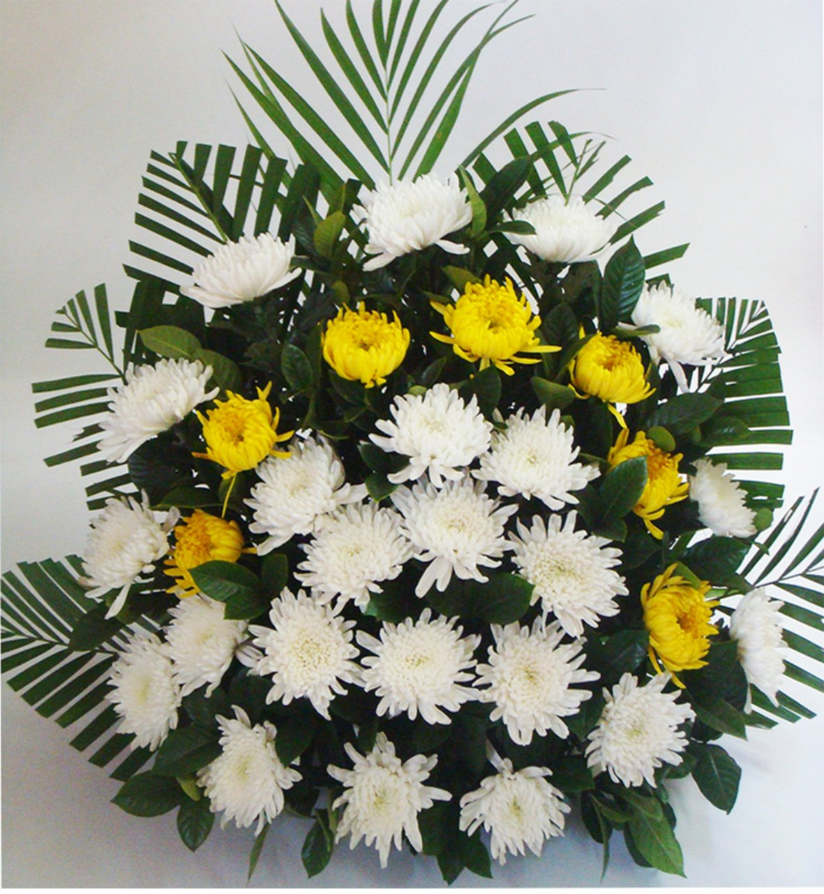 Parting wound( 30 yellow chrysanthemums   -