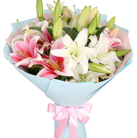Chunhui( Mix and match 21 white pink lilies)