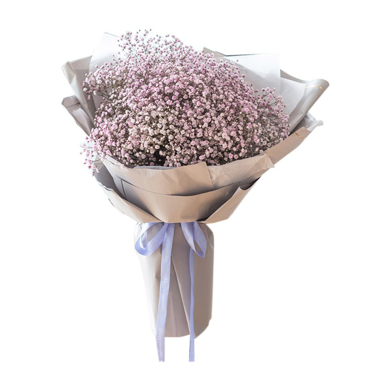 Treasure( Pink gypsophila-