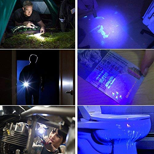 2 in 1 UV Tactical Flashlight Mini Ultraviolet Urine Detector
