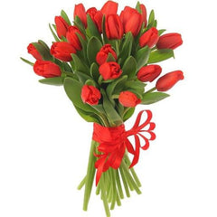 Red tulips (20 stems wrapped)