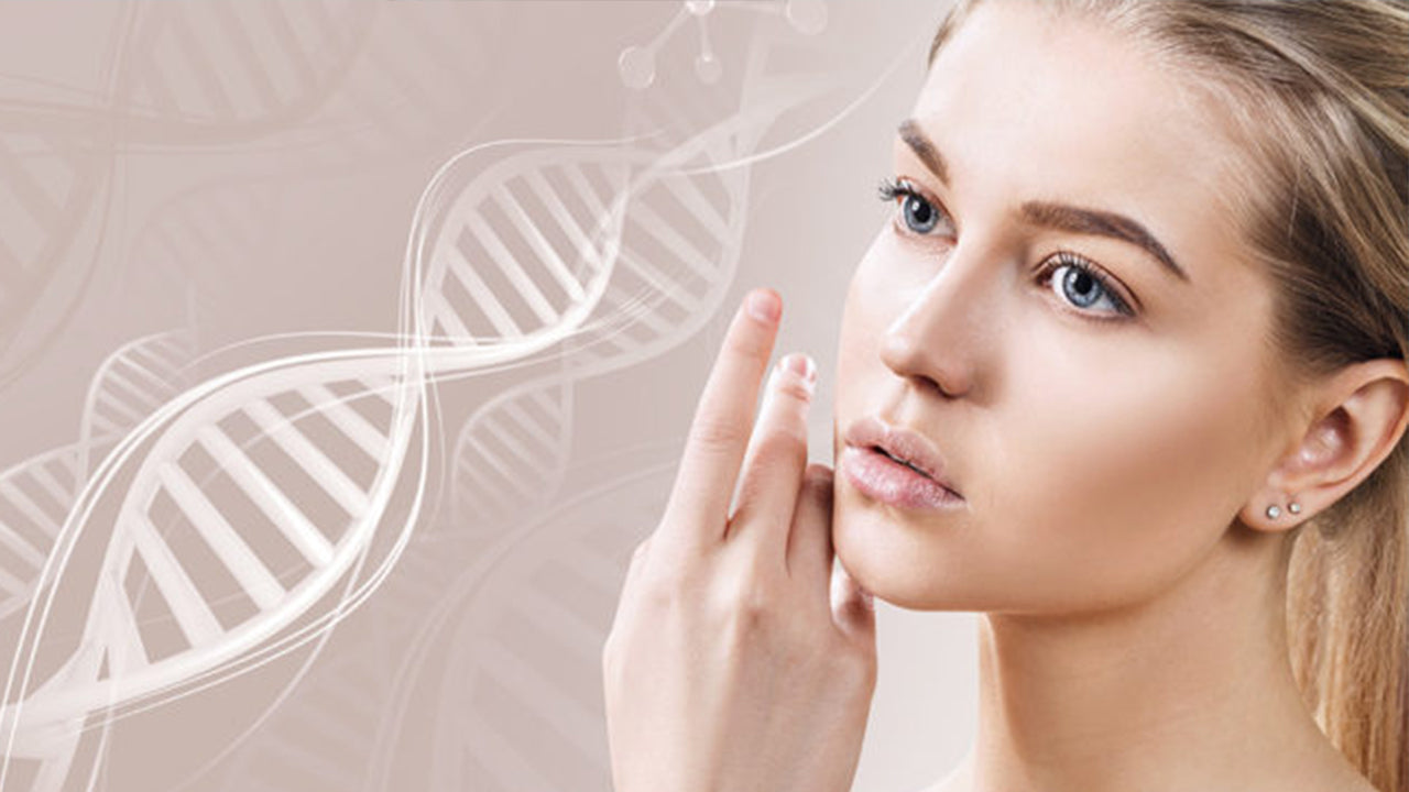 Collagen: Fountain of Youth