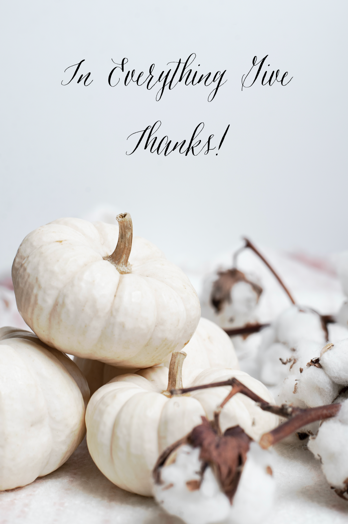 Wishing you a Happy Fall & a Wonderful Thanksgiving.