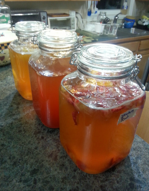 Va Kombucha Tea in Glass Bottle Local Customers Only