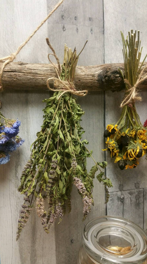 Dried Herbs/Flowers in a small bunch, your choice of set of 4.