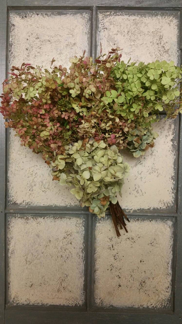 Dried Hydrangea stems- Various shades-set of 3 or 6