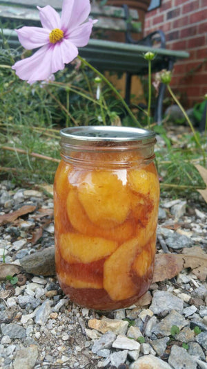 Spiced Yellow Peach Sweet Pickles-Pint Jar