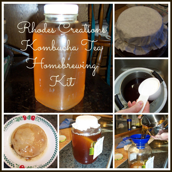 Kombucha Fermented Probiotic Tea Home brewing Kits -1 Quart