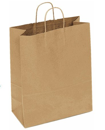 Kraft Paper Gift bag with handles-Set of 10