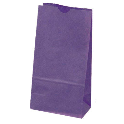 Purple Paper Bags*Favor Bags*Merchandise Bags-Set of 10