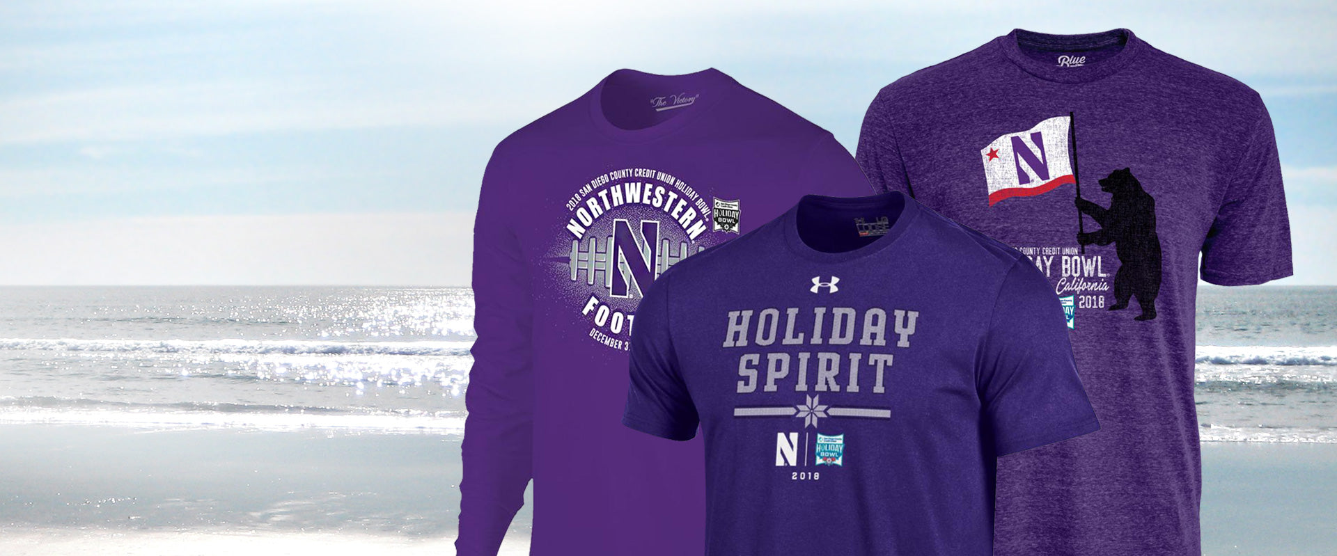 Northwestern Official Store