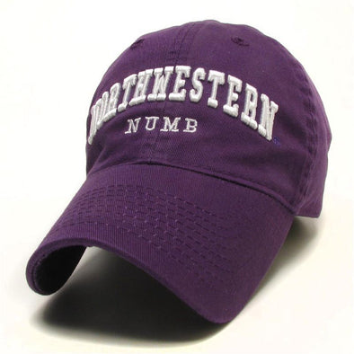Northwestern Wildcats Numb Hat