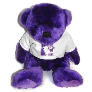 Northwestern Wildcats Purple Bear