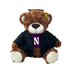 Northwestern Wildcats Graduation Bear