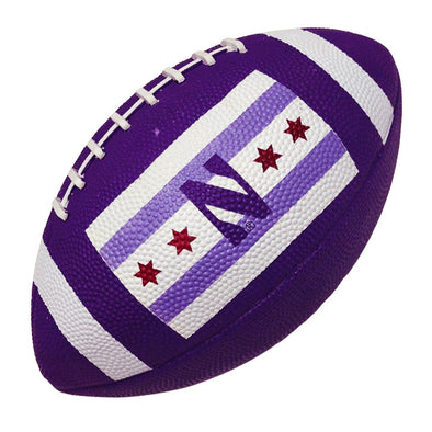 Northwestern Wildcats Chicago's Big Ten Team Football