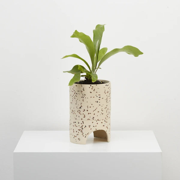 Capra Designs Archie Pot Terrazzo Fossil Rose City Goods Ethically Made in Australia Planter With Hole For Drainage Water Tray Included Female Artisans Sustainably Made Ethically Made Housewares