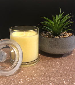 Lemon Fizz Scented Candle