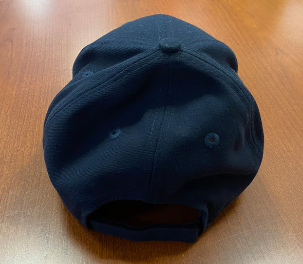 Toyota Frozen Dome Classic Adjustable Hat - New Era