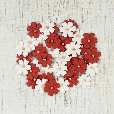 Christmas Beaded Mini Daisies 40pcs Red & White