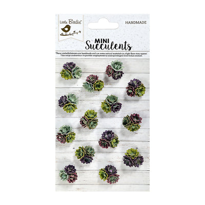 Succulent Perfetti 14Pc Hobby Craft