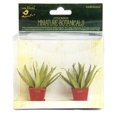 Miniature Botanical Aloe 2pcs