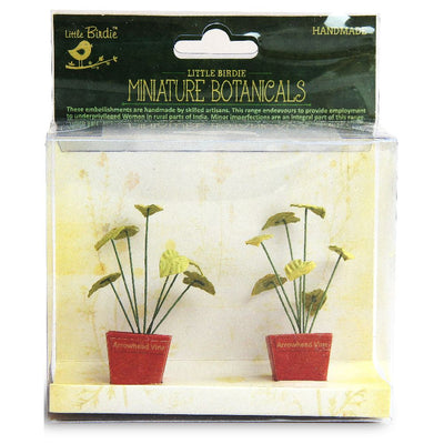 Miniature Botanical Arrowhead Vine 2pcs
