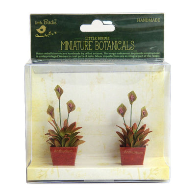 Miniature Botanical Anthurium  2pcs