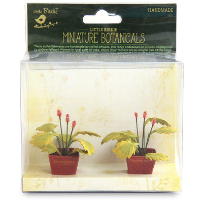 Miniature Botanical Flaming Katy 2pcs