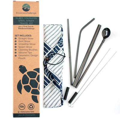 Black Stainless Steel Drinking Straw Set