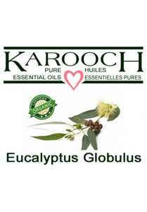 Eucalyptus Globulous (organic and regular)