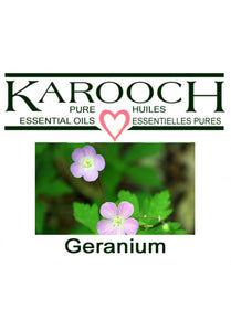 Geranium (organic and regular)