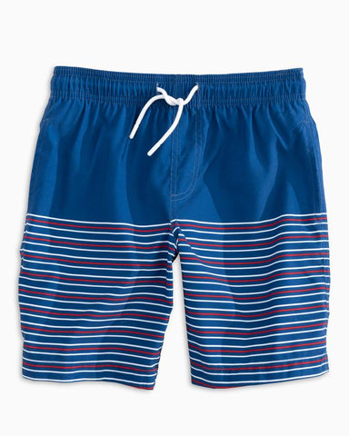 Y Fireworks Stripe Swim Trunk