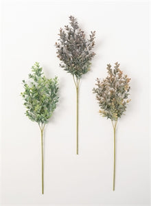 Hedgerow Stem Assorted