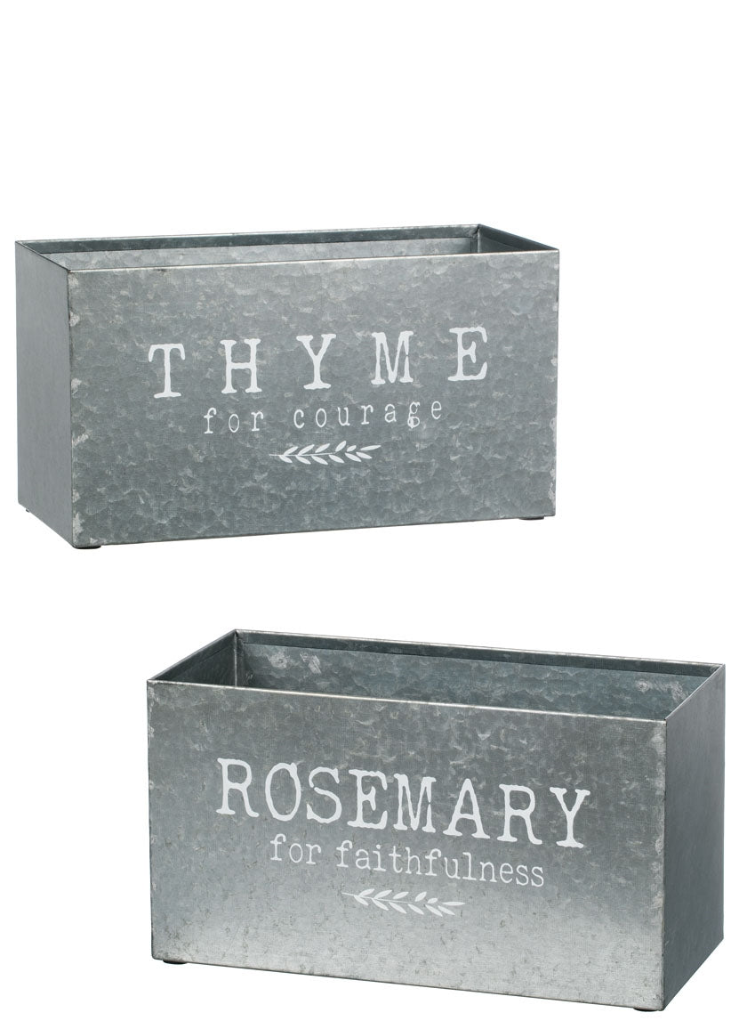 Rosemary & Thyme Planters