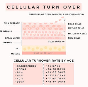 Cellular Turnover And Why It's Important To Keep Moving
