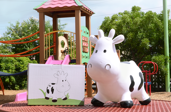 Amy's Ice Creams Bouncy Cow with Box