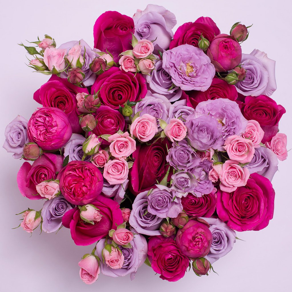 Mille Rose Collection - Medium Box - Rose Mix Rosa - Scatola Bianca