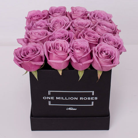 Classic Collection - Cube Box - Rose Rosa - Scatola Nera