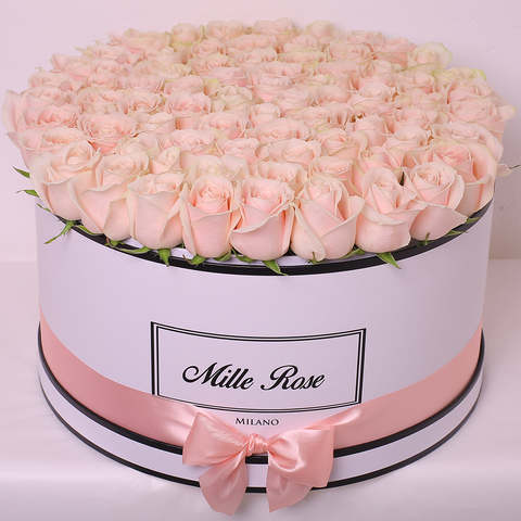 Mille Rose Collection - One Million Box - Rose Rosa Pesco - Scatola Bianca