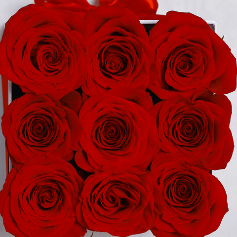 Classic Collection - Cube Box - Rose Rosse - Scatola Bianca